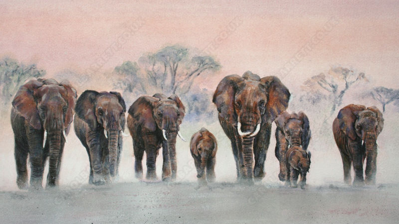 elephants by Carol Barrett