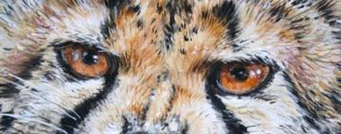 Carol Barrett wildlife artist