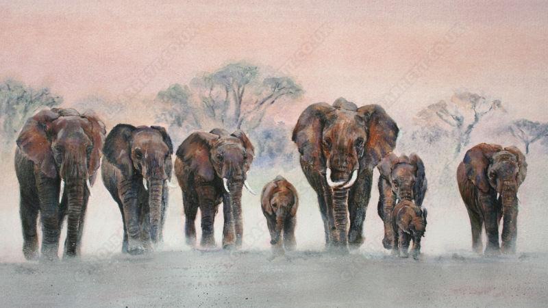elephants by Carol Barrett